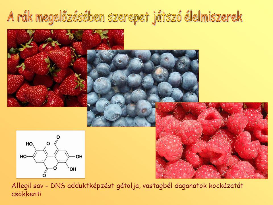 A rák megelőzésében szerepet játszó élelmiszerek