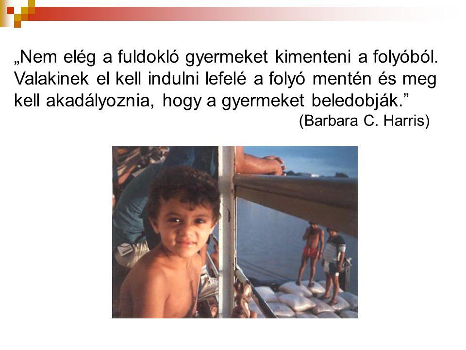 """""""Nem elég a fuldokló gyermeket kimenteni a folyóból"""
