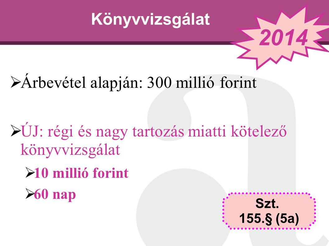 2014 Könyvvizsgálat Árbevétel alapján: 300 millió forint