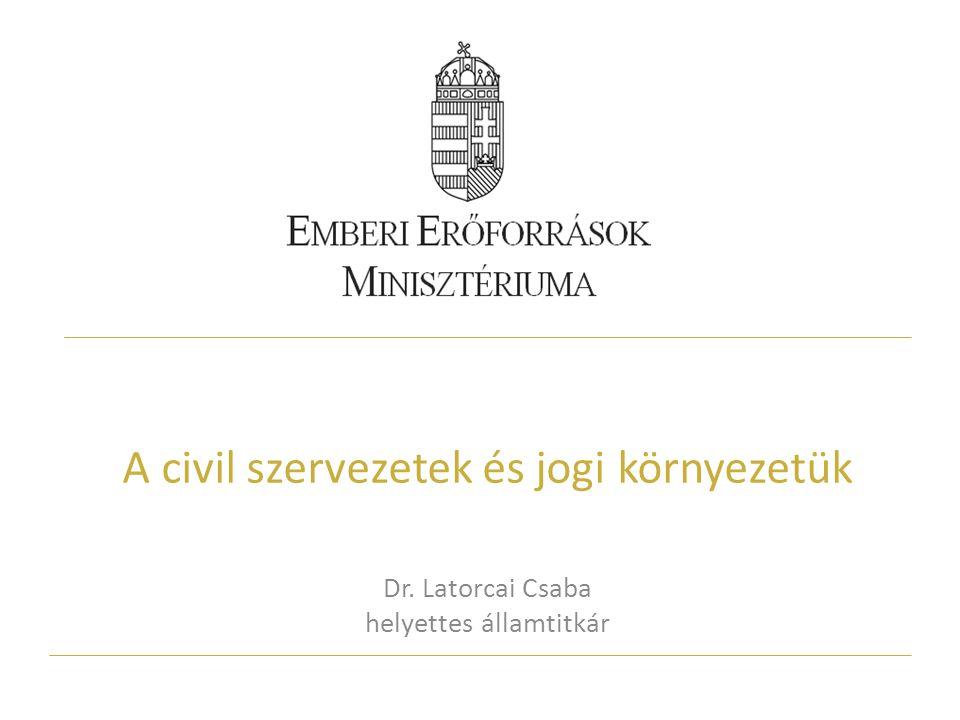 A civil szervezetek és jogi környezetük