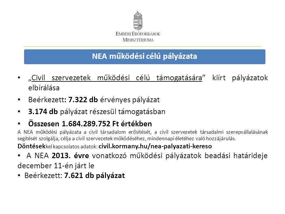 NEA működési célú pályázata