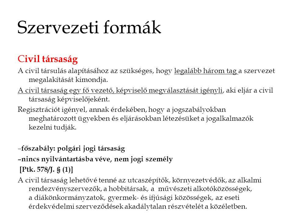 Szervezeti formák Civil társaság