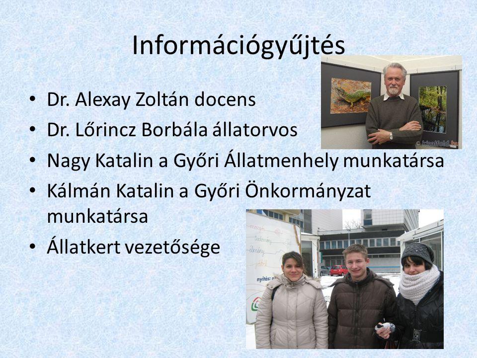 Információgyűjtés Dr. Alexay Zoltán docens