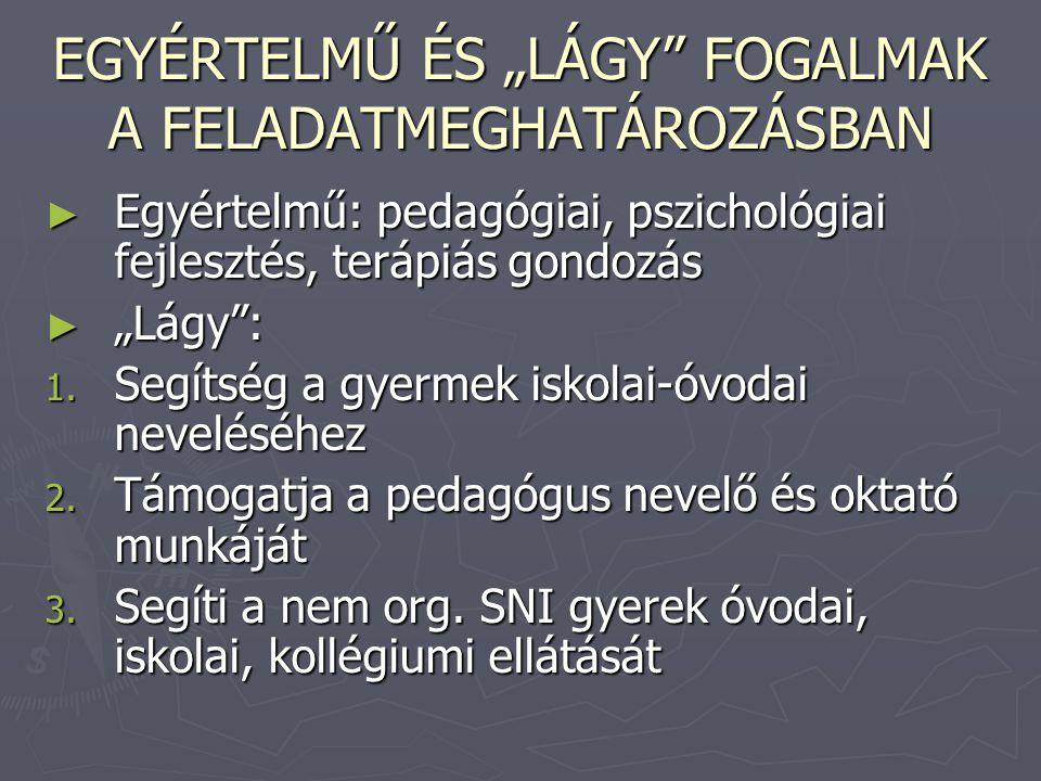 """EGYÉRTELMŰ ÉS """"LÁGY FOGALMAK A FELADATMEGHATÁROZÁSBAN"""