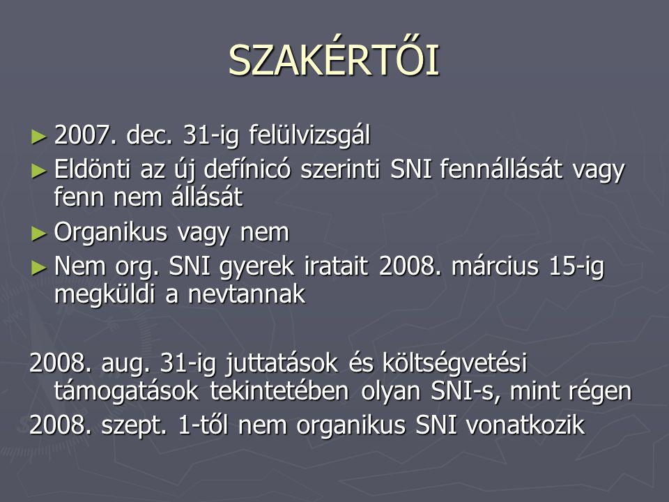 SZAKÉRTŐI 2007. dec. 31-ig felülvizsgál