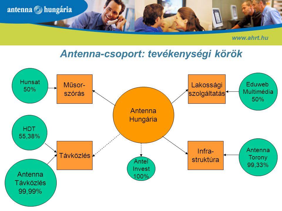 Antenna-csoport: tevékenységi körök
