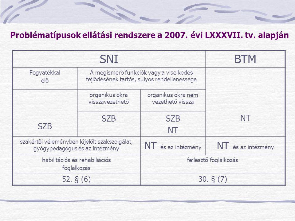 Problématípusok ellátási rendszere a 2007. évi LXXXVII. tv. alapján