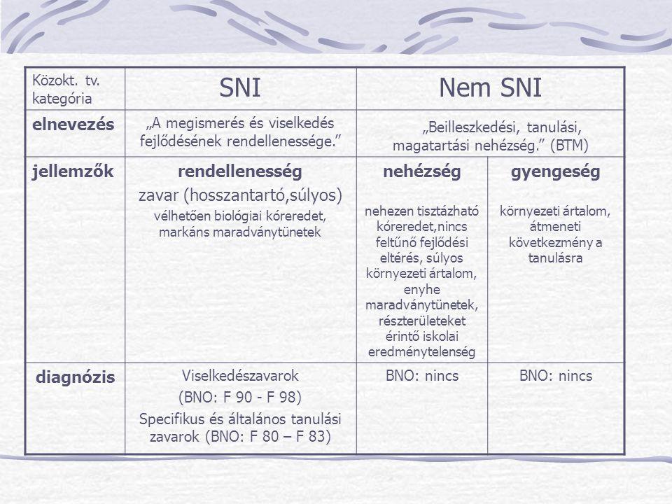 """SNI Nem SNI """"Beilleszkedési, tanulási, magatartási nehézség. (BTM)"""
