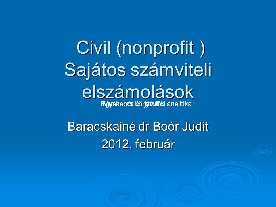 Civil (nonprofit ) Sajátos számviteli elszámolások