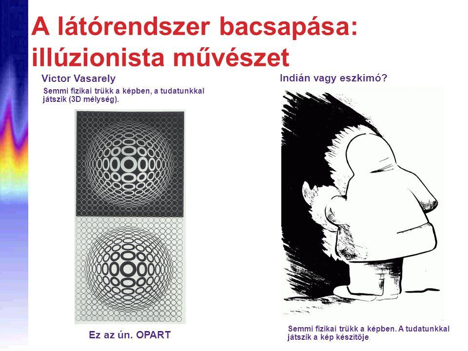 A látórendszer bacsapása: illúzionista művészet