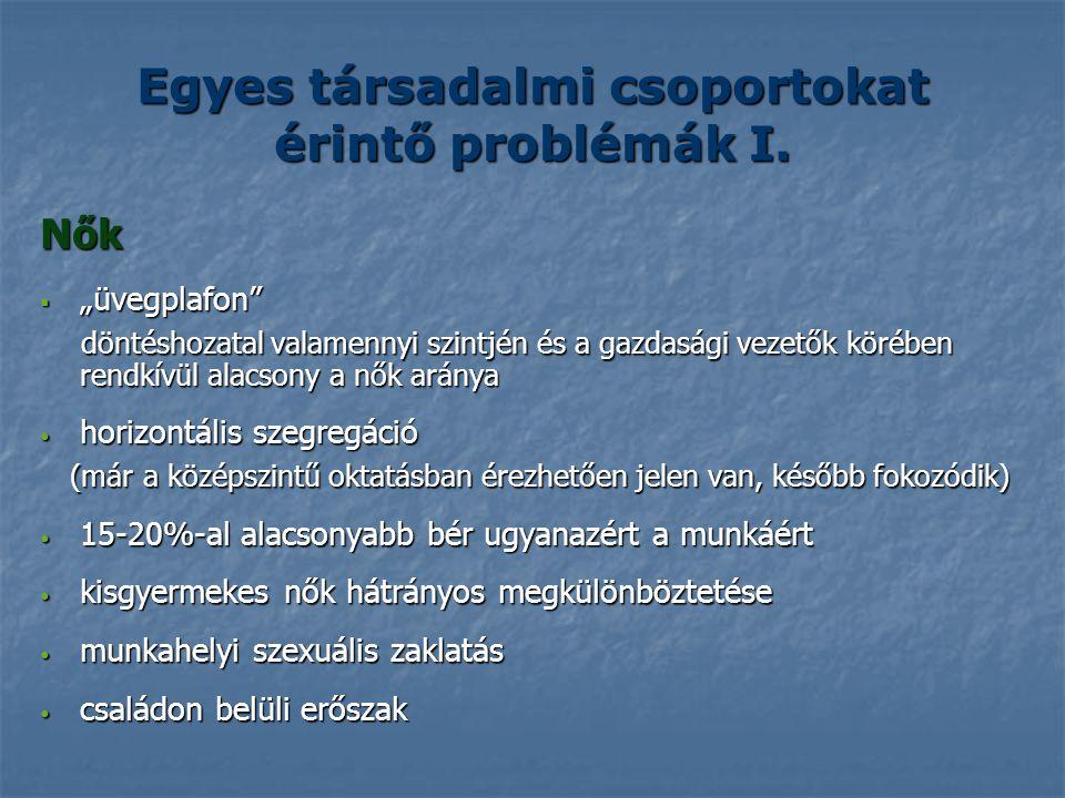 Egyes társadalmi csoportokat érintő problémák I.