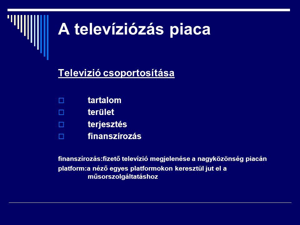 A televíziózás piaca Televizió csoportosítása tartalom terület