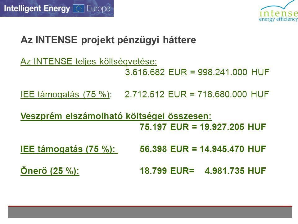 Az INTENSE projekt pénzügyi háttere