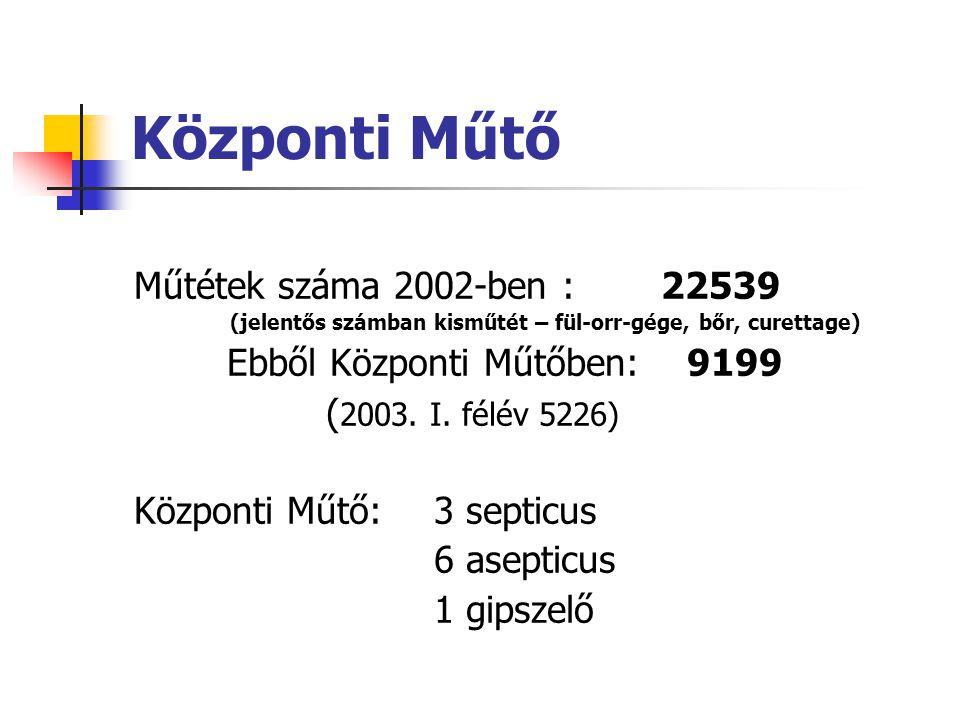 Központi Műtő Műtétek száma 2002-ben : 22539