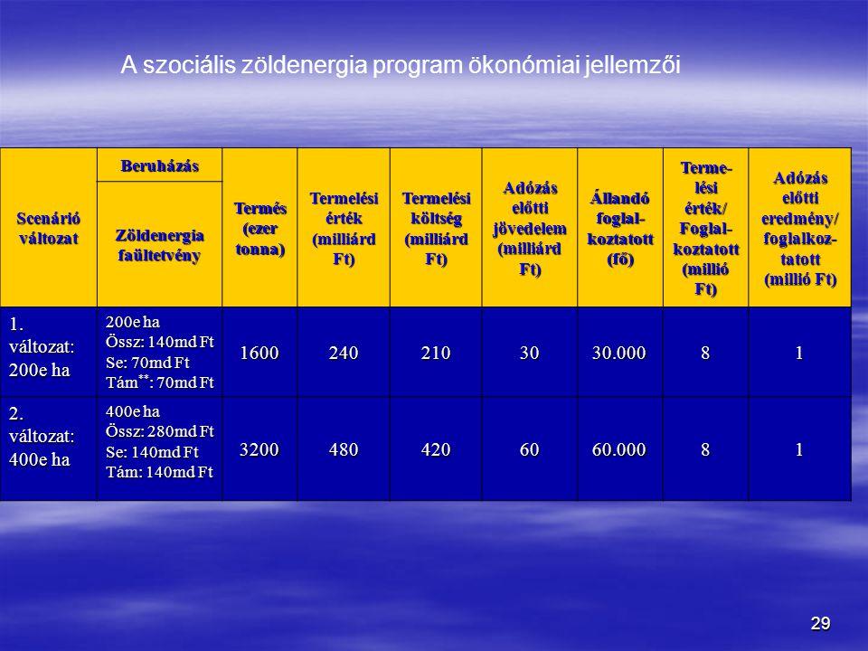 A szociális zöldenergia program ökonómiai jellemzői