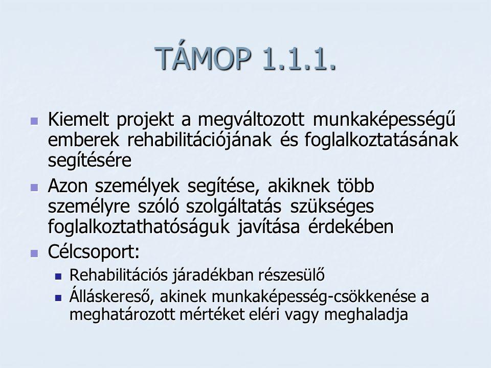 TÁMOP 1.1.1. Kiemelt projekt a megváltozott munkaképességű emberek rehabilitációjának és foglalkoztatásának segítésére.