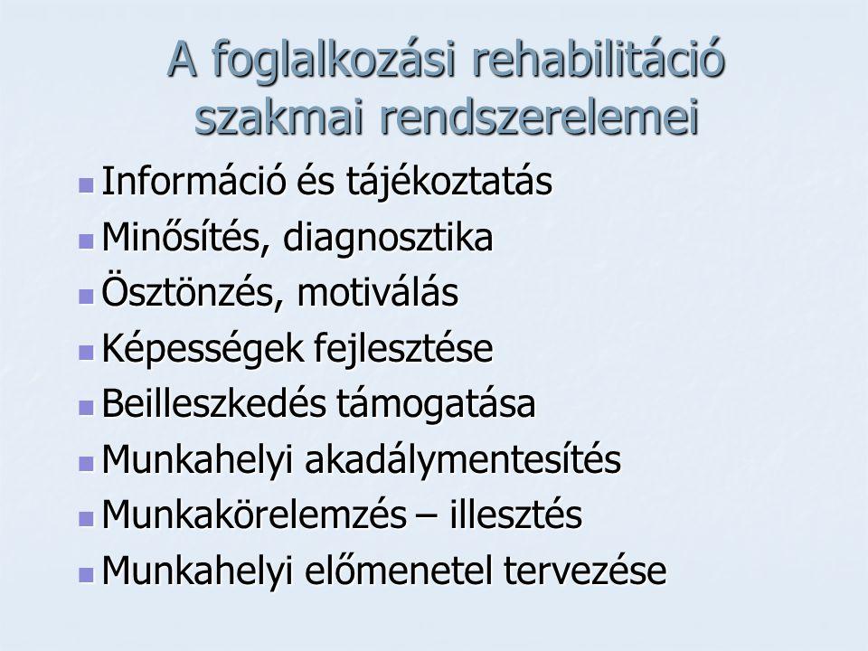 A foglalkozási rehabilitáció szakmai rendszerelemei