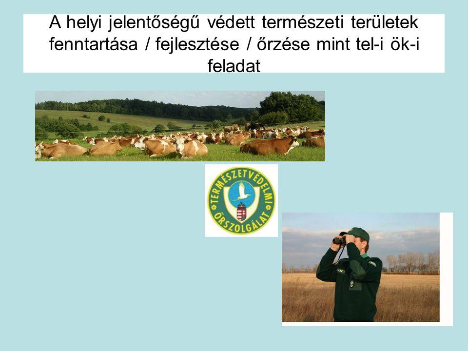 A helyi jelentőségű védett természeti területek fenntartása / fejlesztése / őrzése mint tel-i ök-i feladat