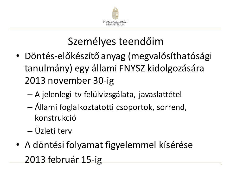 Személyes teendőim Döntés-előkészítő anyag (megvalósíthatósági tanulmány) egy állami FNYSZ kidolgozására 2013 november 30-ig.