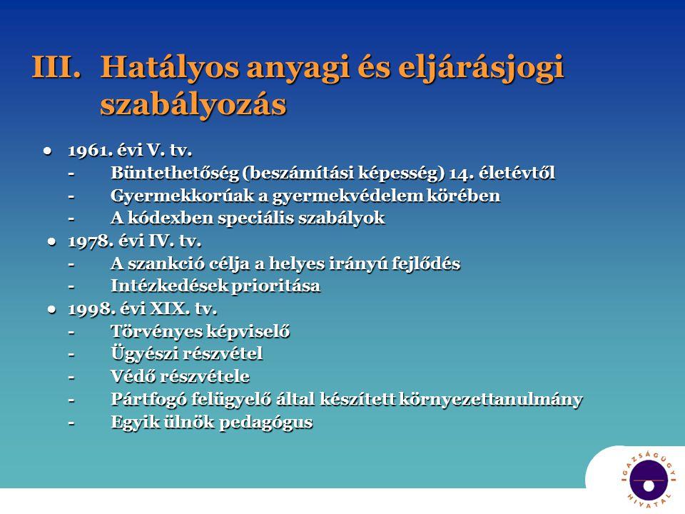 III. Hatályos anyagi és eljárásjogi szabályozás