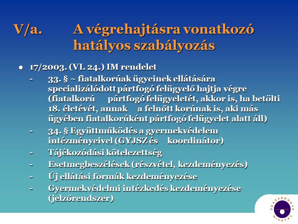 V/a. A végrehajtásra vonatkozó hatályos szabályozás