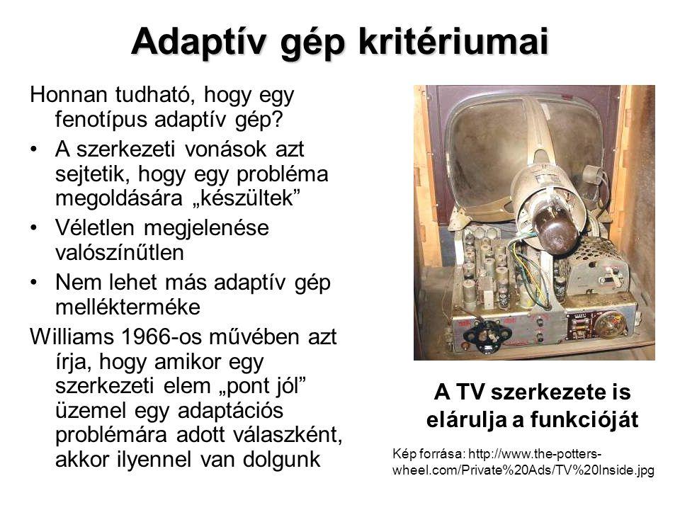 Adaptív gép kritériumai