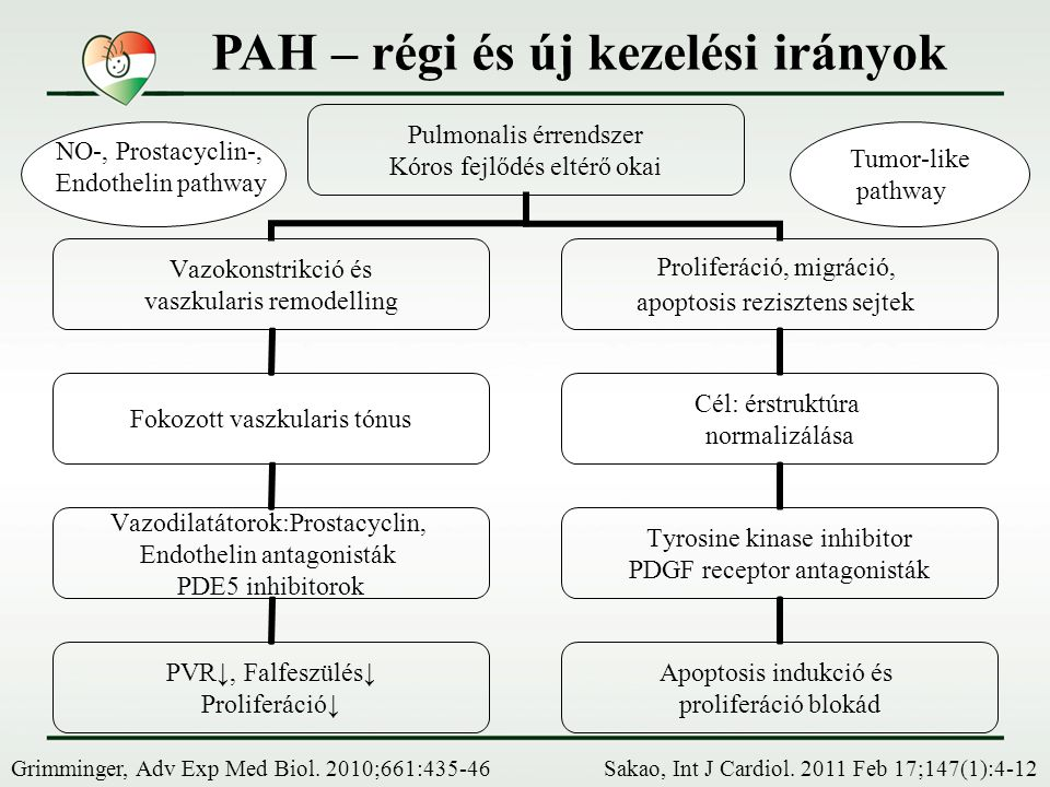 PAH – régi és új kezelési irányok