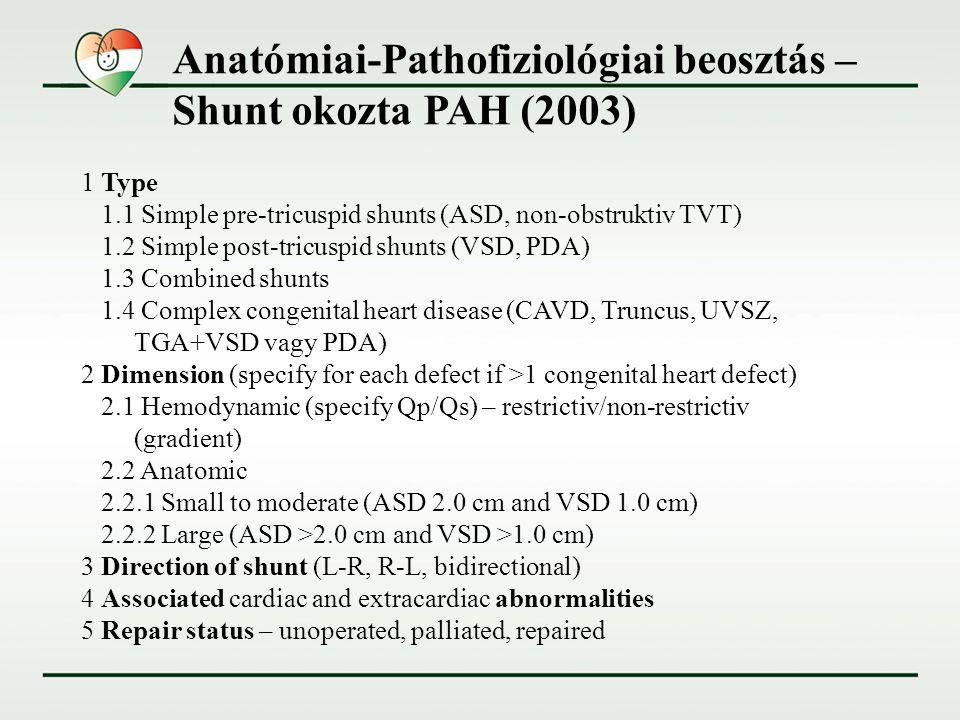 Anatómiai-Pathofiziológiai beosztás – Shunt okozta PAH (2003)