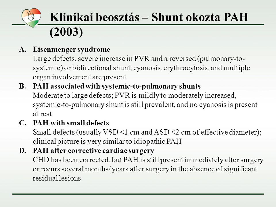 Klinikai beosztás – Shunt okozta PAH (2003)