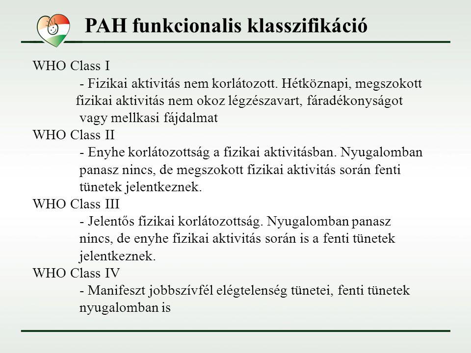 PAH funkcionalis klasszifikáció