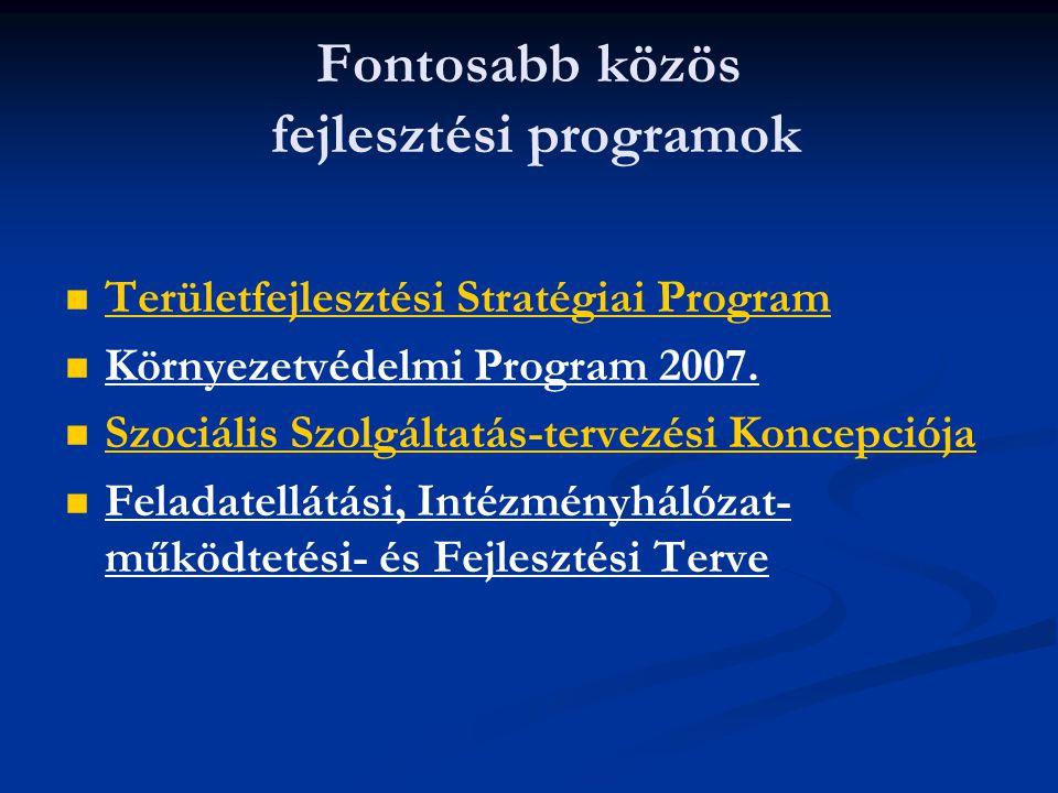Fontosabb közös fejlesztési programok