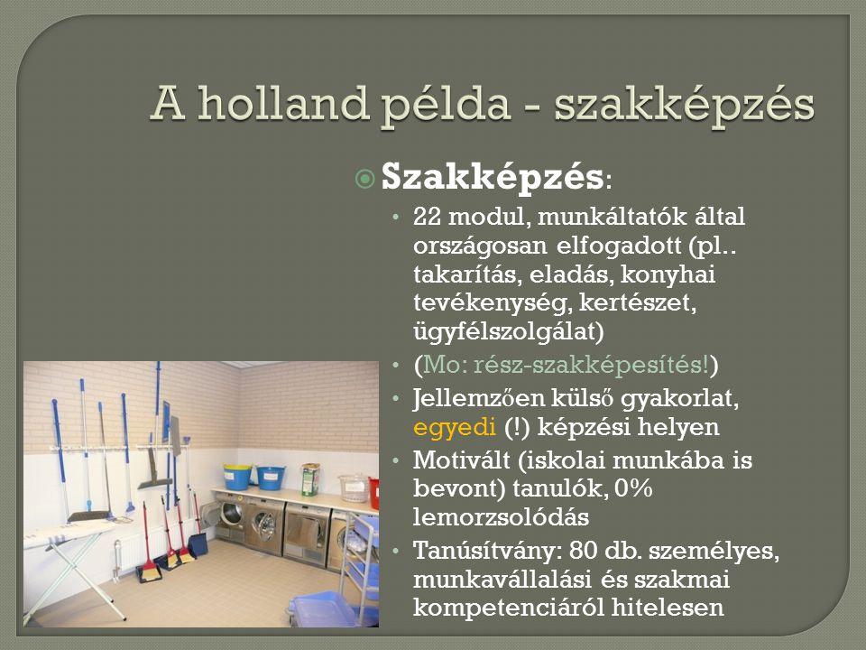 A holland példa - szakképzés