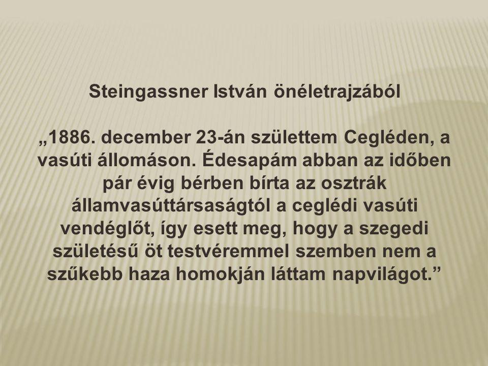 Steingassner István önéletrajzából