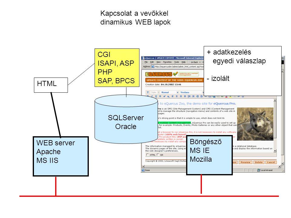 Kapcsolat a vevőkkel dinamikus WEB lapok. + adatkezelés. egyedi válaszlap. - izolált. CGI. ISAPI, ASP.