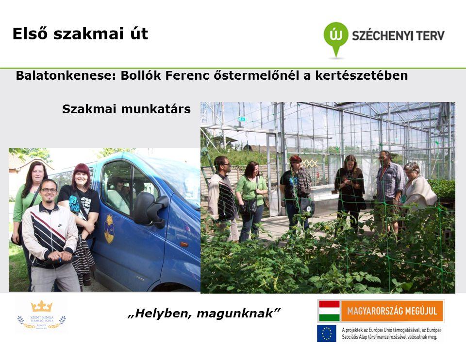Első szakmai út Balatonkenese: Bollók Ferenc őstermelőnél a kertészetében.
