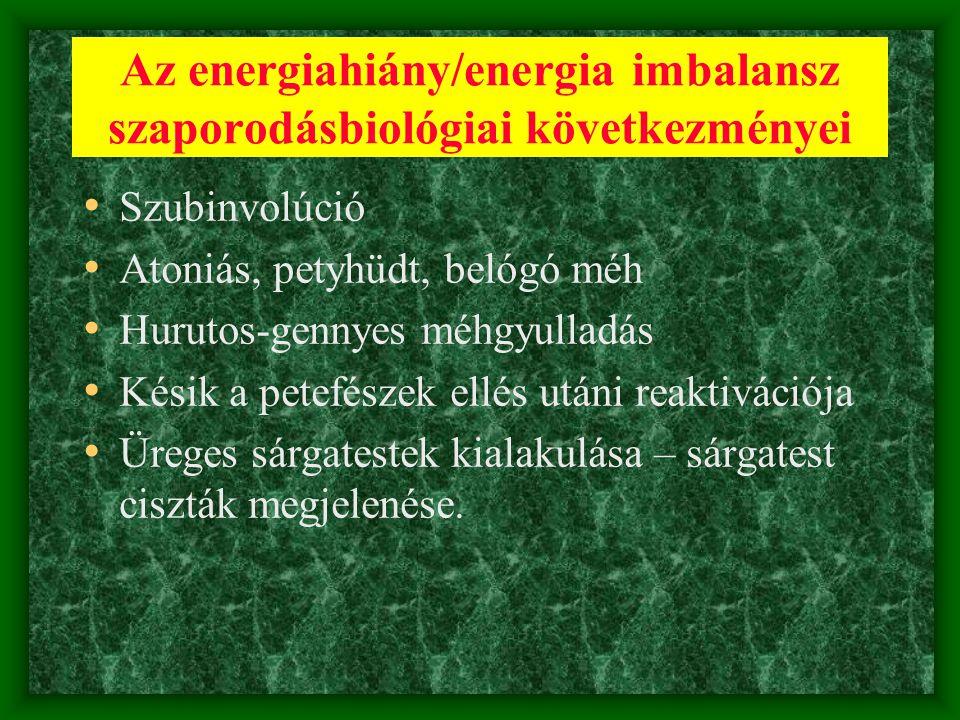 Az energiahiány/energia imbalansz szaporodásbiológiai következményei
