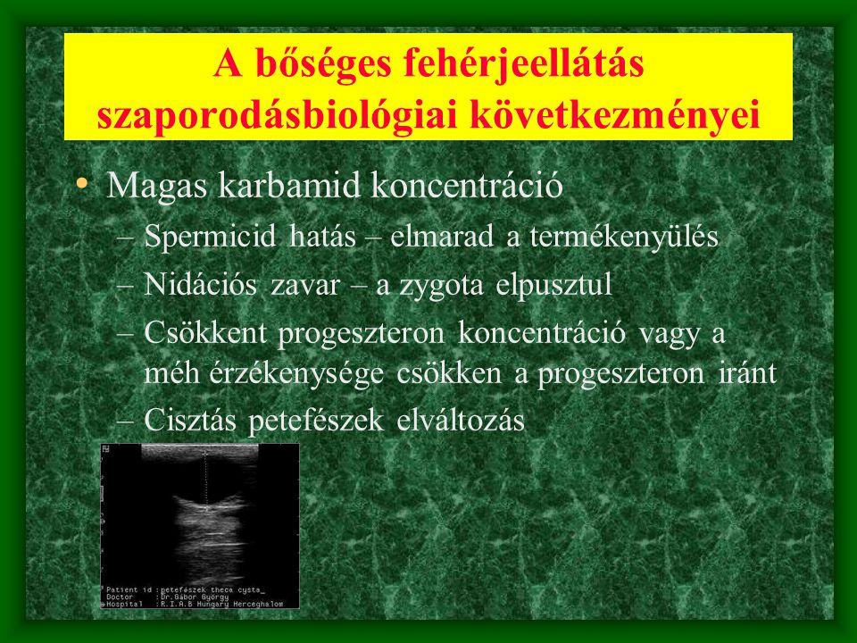 A bőséges fehérjeellátás szaporodásbiológiai következményei