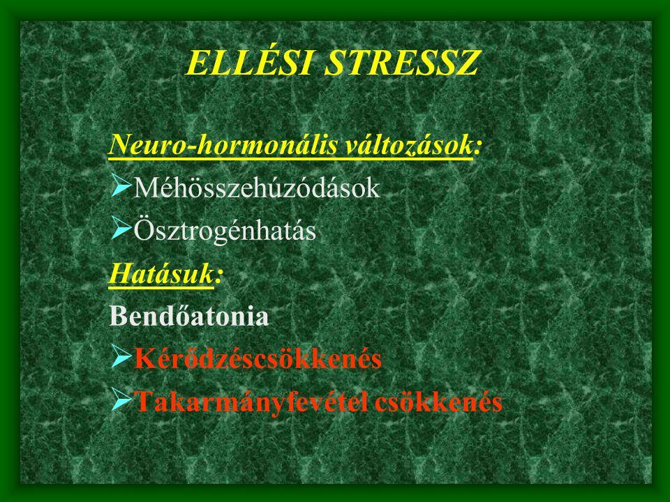 ELLÉSI STRESSZ Neuro-hormonális változások: Méhösszehúzódások
