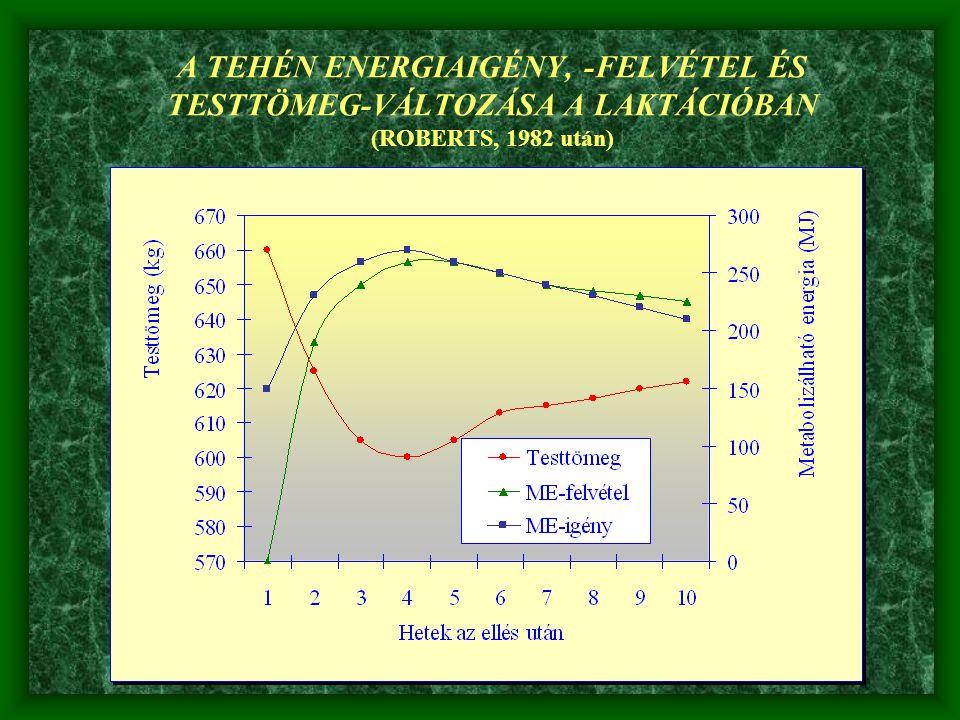 A TEHÉN ENERGIAIGÉNY, -FELVÉTEL ÉS TESTTÖMEG-VÁLTOZÁSA A LAKTÁCIÓBAN (ROBERTS, 1982 után)