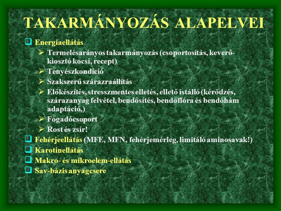 TAKARMÁNYOZÁS ALAPELVEI