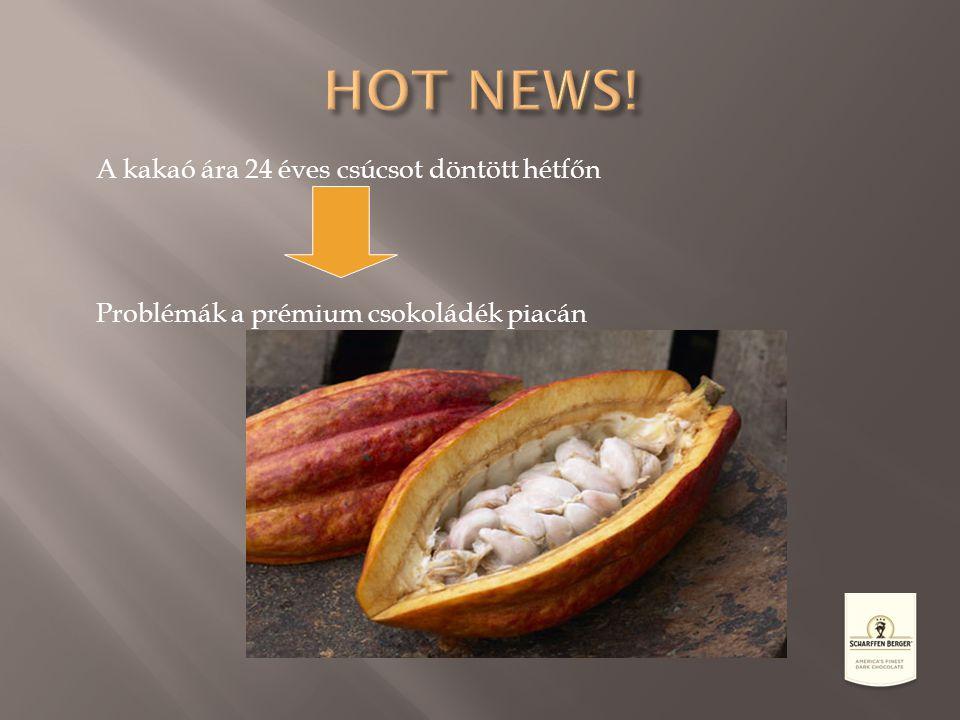 HOT NEWS! A kakaó ára 24 éves csúcsot döntött hétfőn