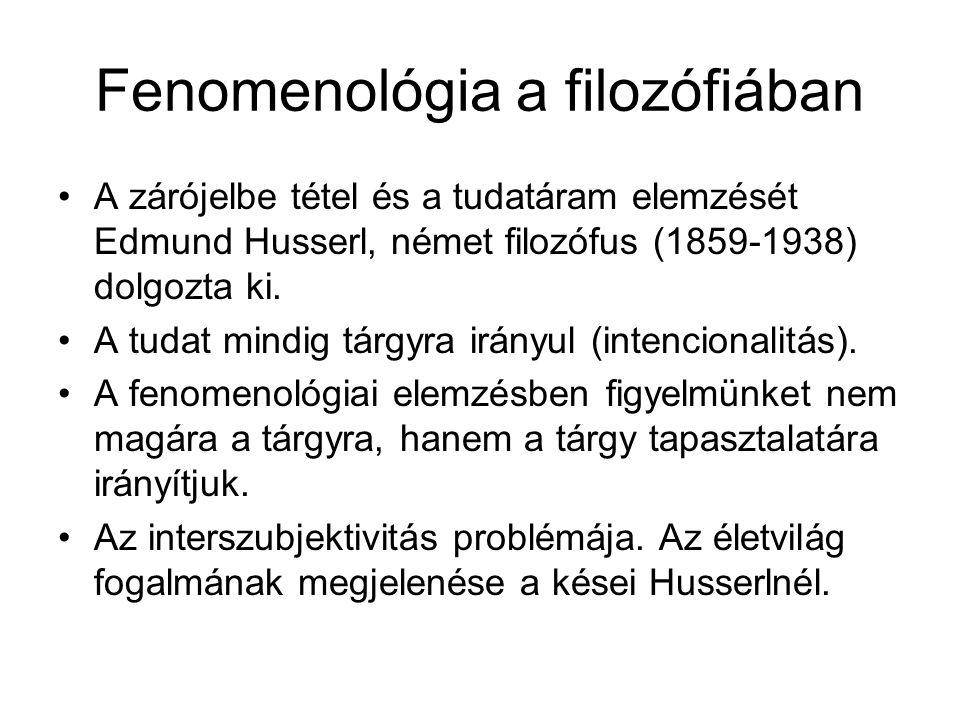 Fenomenológia a filozófiában