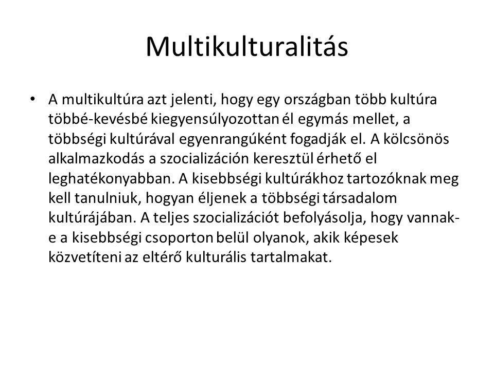 Multikulturalitás