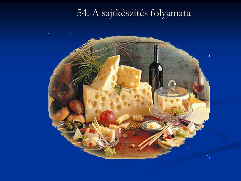 54. A sajtkészítés folyamata