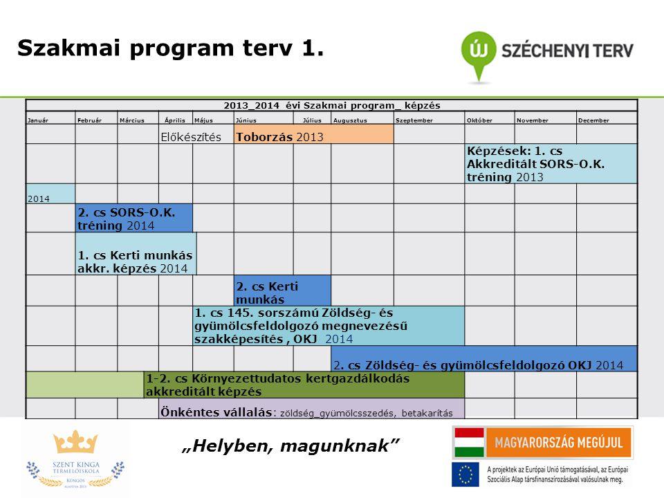 2013_2014 évi Szakmai program_ képzés