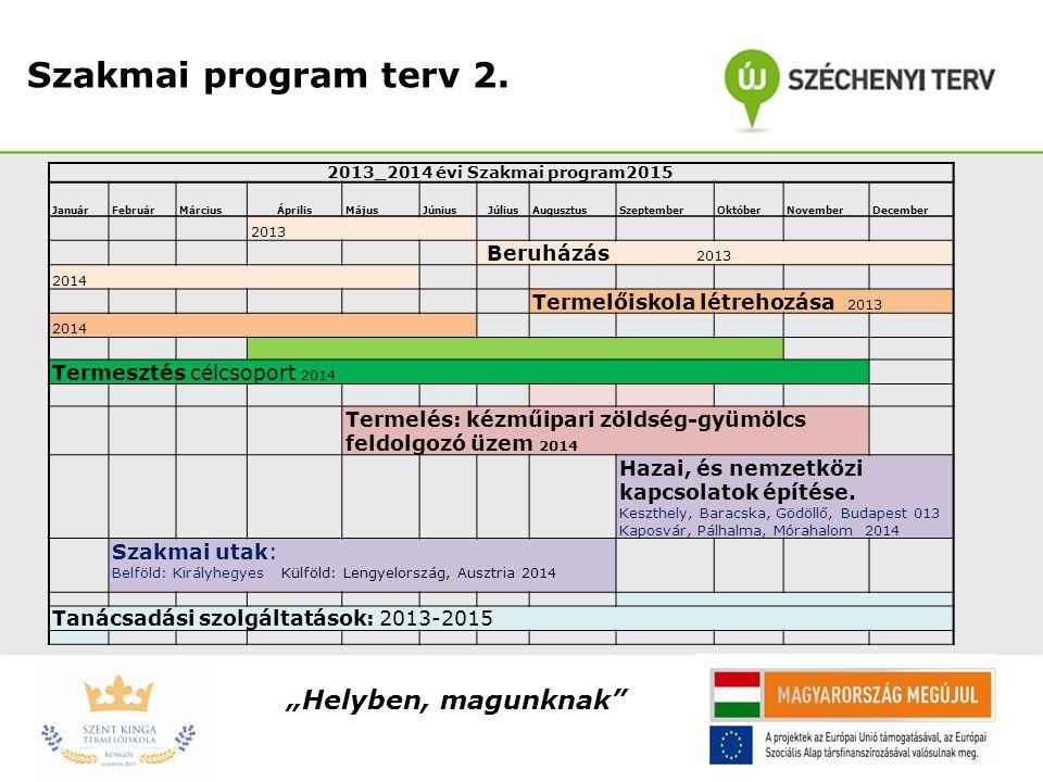 """Szakmai program terv 2. """"Helyben, magunknak Beruházás 2013"""