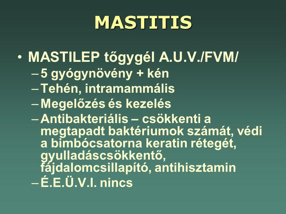 MASTITIS MASTILEP tőgygél A.U.V./FVM/ 5 gyógynövény + kén