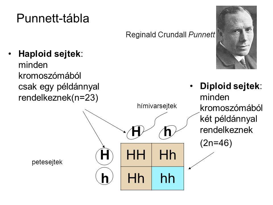 Punnett-tábla Reginald Crundall Punnett