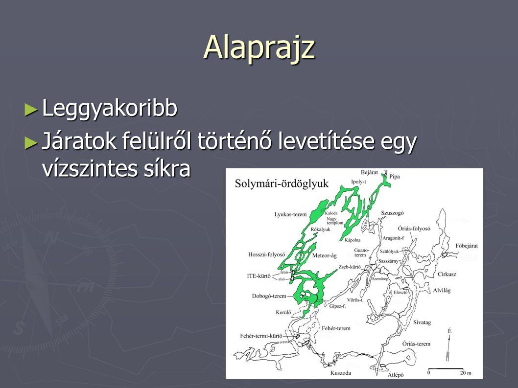 Alaprajz Leggyakoribb