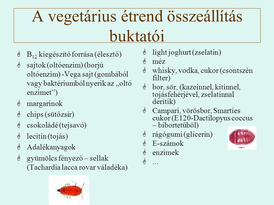 A vegetárius étrend összeállítás buktatói